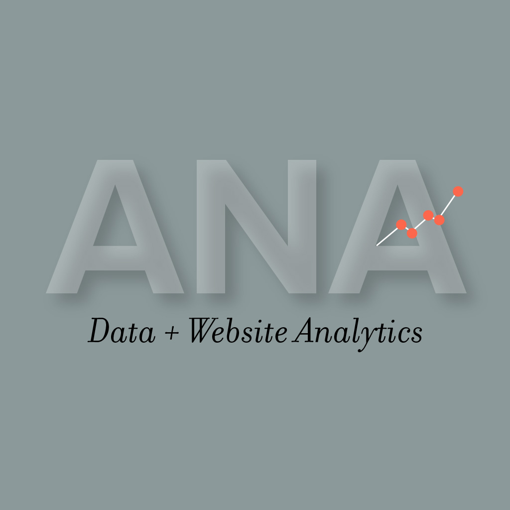 Data + Website Analytics